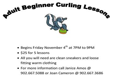 Adult Beginner Lessons - Starts Nov 4th, 2016