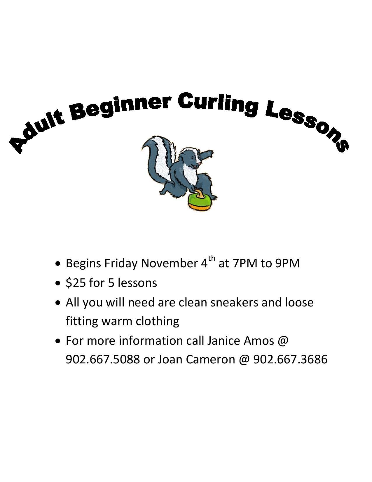 Adult Beginner Lessons